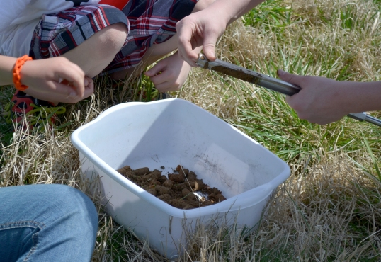 4 h from the perspective of a home school mom lesson plan for Soil 4 youth