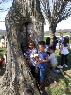 How many little people can you fit in our trees?